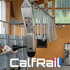 calfrail