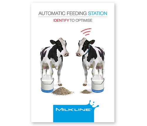Automatic feeding station