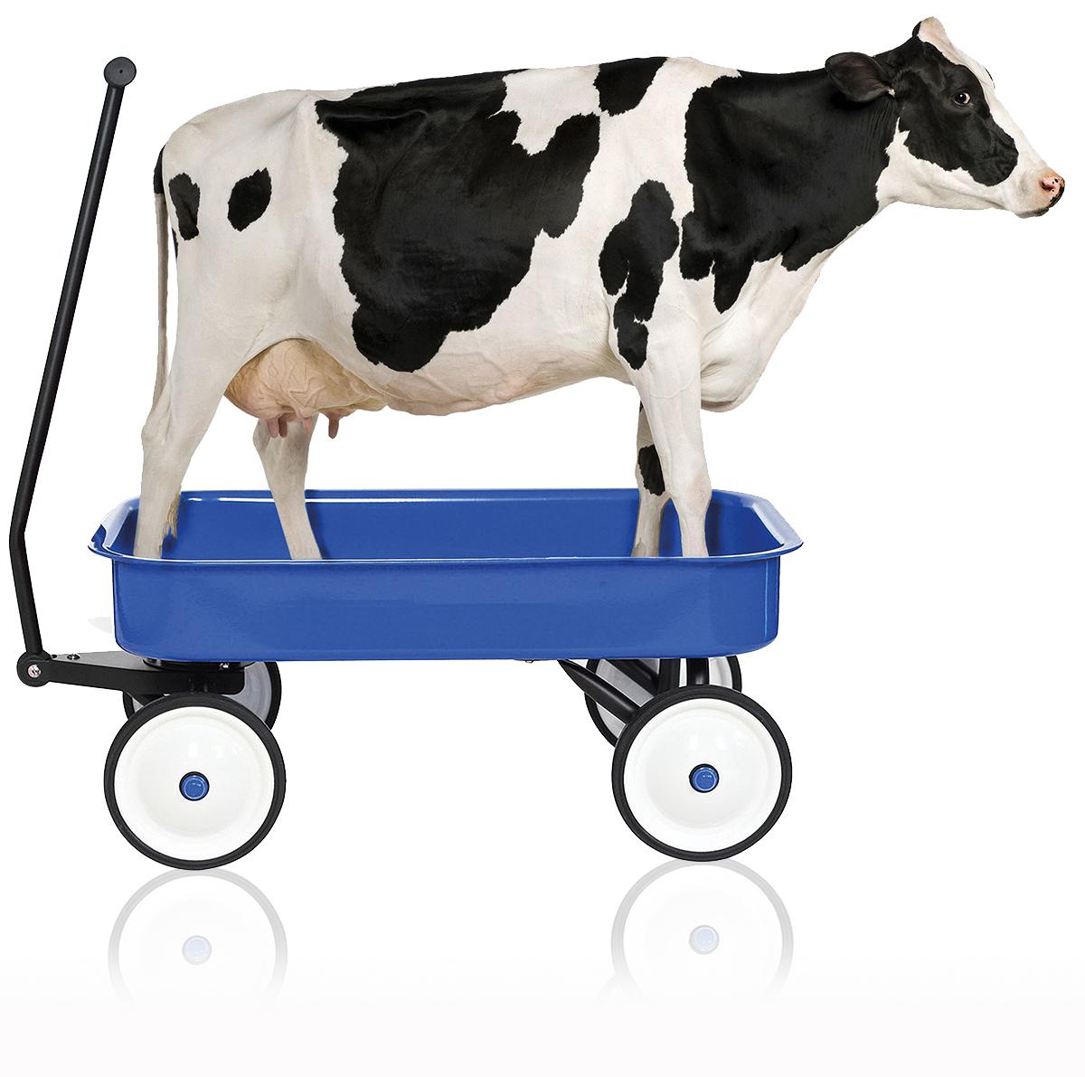 trasporto latte