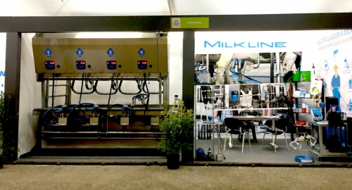 Milkline go to Noci for the dairy cattle show