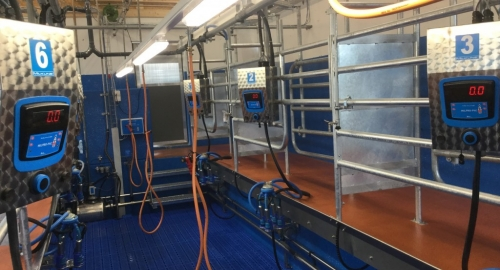 New Tandem parlour 3+3 with Milkit Smart