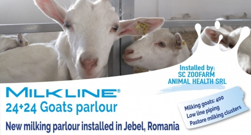 New 24+24 milking parlour for goats