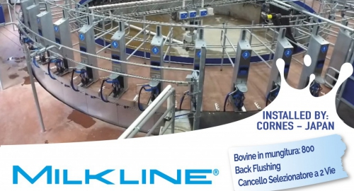 Milkline proactive 50 points rotary parlour with external milking